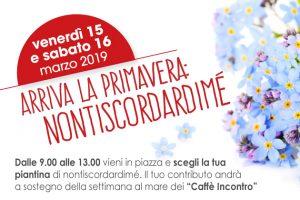 Particolare della locandina delle giornate in piazza con i nontiscordardimé di AIMA Reggio Emilia