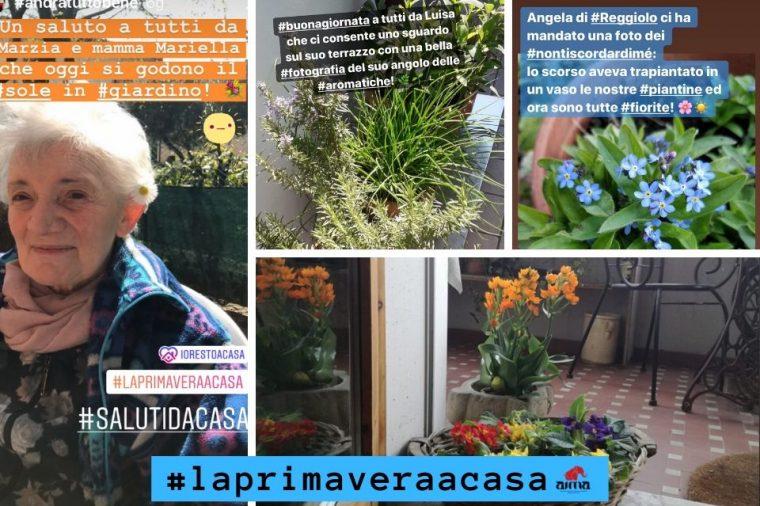 Foto e video dei #salutidacasa e #laprimaveraacasa di AIMA Reggio Emilia