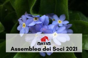 Assemblea dei Soci AIMA Reggio Emilia 2021